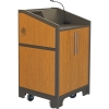 ARCO™-2525M Style Lectern with AL-R17 Interior Configuration in Slate Gray and Asian Sun Melamine - Back View