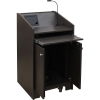 ELCO™-25 System Lectern in Asian Night Melamine - Back Open View