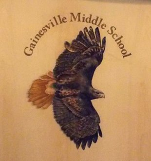 Laser Etched in Front Panel, Painted - Gainesville Middle School